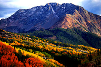 Fall color in the San Juan Mountains