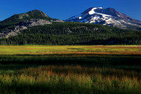 Morning at Sparks Meadow with South Sister as backdrop