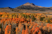 2012 Fall color in the Sierra Nevada Mountains