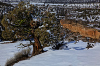 Winter scene along rim of Deschutes Canyon, Crooked River Ranch