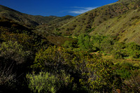 Above Sycamore Canyon